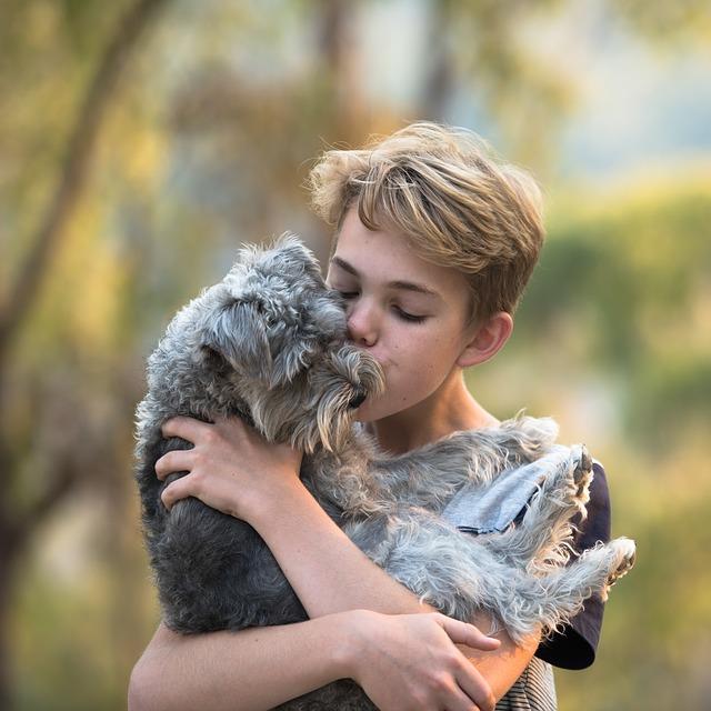 boy, dog, friendship