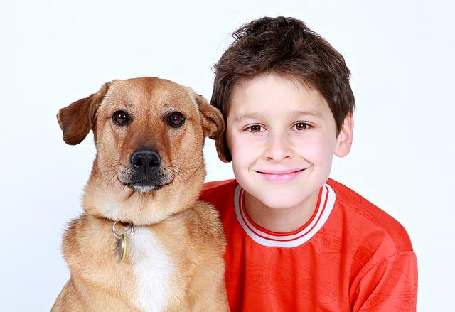 boy, dog, friends
